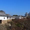 元日の姫路城