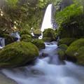 Photos: 熊本のwaterfall