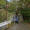 Photos: 東海東の秋景