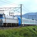 8862レ EF66 130+東京メトロ16000系16128F 10両