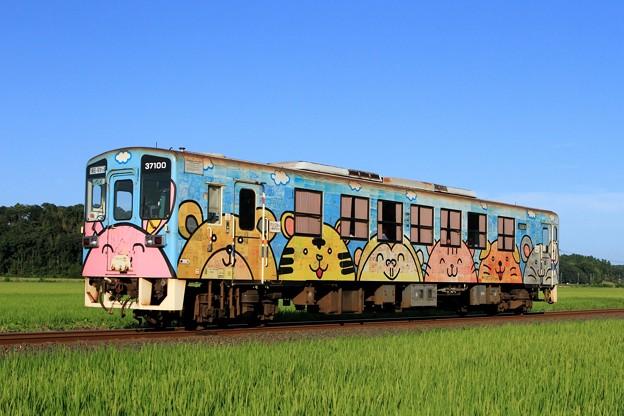 144レ ひたちなか海浜鉄道キハ37100-03
