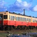 Photos: 38レ 小湊鐵道キハ212+キハ206