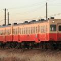 Photos: 33レ 小湊鐵道キハ202+キハ208