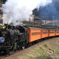 101レ C11 190+旧型客車 5両