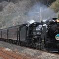 9136レ D51 498+旧型客車 4両+EF60 19