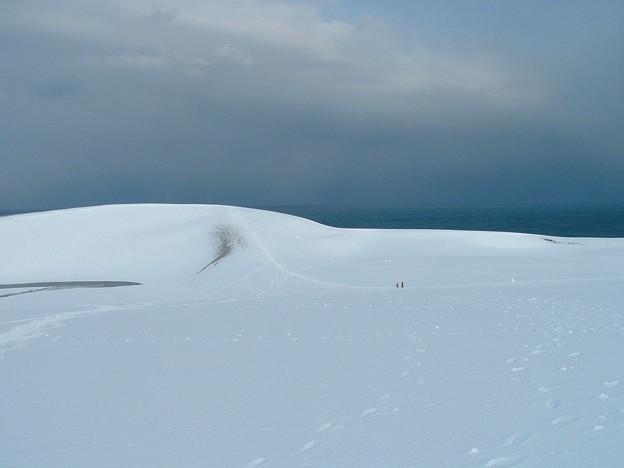 鳥取砂丘・雪