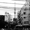 Photos: 東京スカイツリー (台東区浅草)