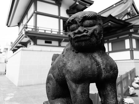 花園神社 (新宿区新宿)