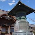 真光寺 (群馬県渋川市渋川)