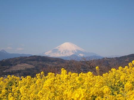 吾妻山 (7)