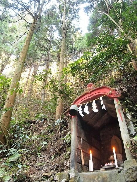 写真: 高尾山 (3)