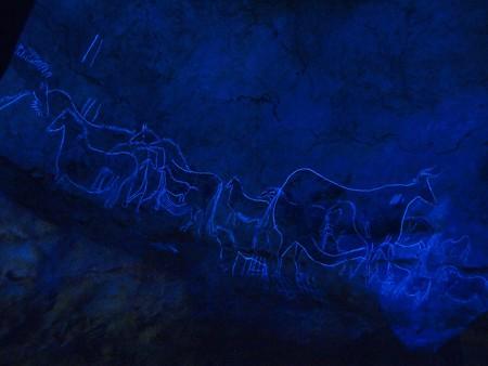 ラスコー展 (70) 黒い牝牛