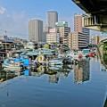 写真: 手前生国と発します所横浜です。