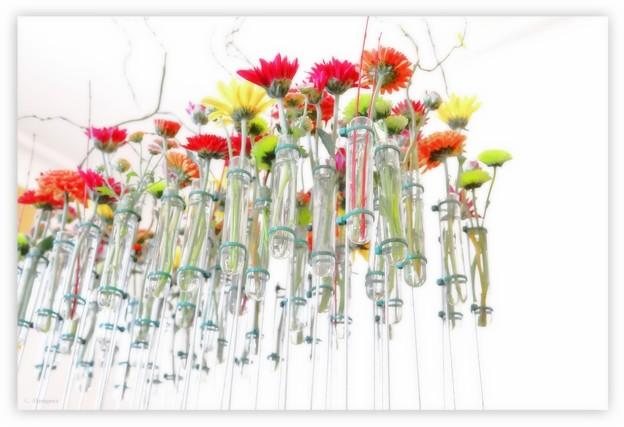 ハロウィン・山手西洋館 test-tube flowers.