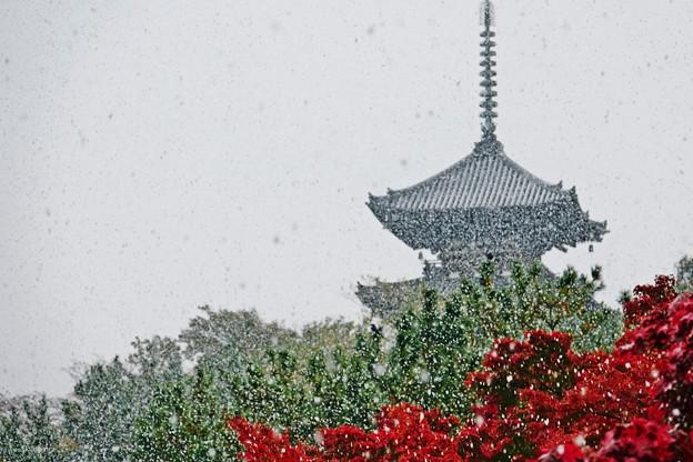 11-snow.