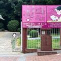 Photos: 呉市立美術館 呉市幸町 2016年8月27日 スマホアプリ 舞台めぐり AR撮影