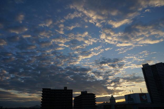 Photos: DSC07832