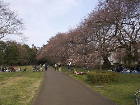 野川公園(1)