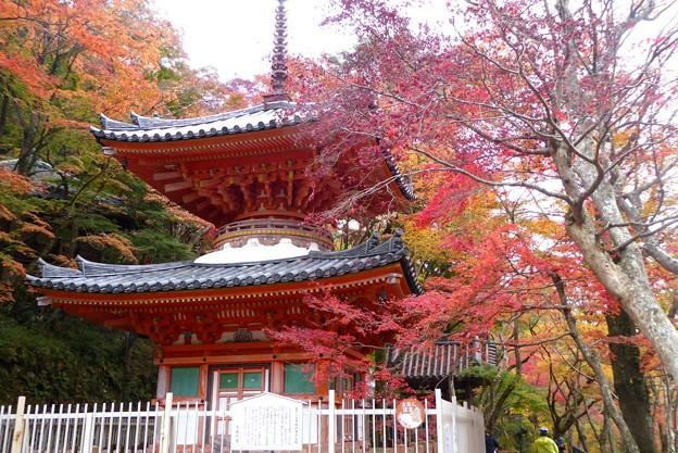 大威徳寺の多宝塔