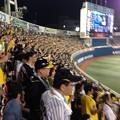 Photos: 横浜VS阪神 2014 08 16