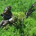 Photos: 玉祖神社前の鳥の枯れ木アート (8)