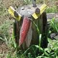 Photos: 玉祖神社前の鳥の枯れ木アート (9)