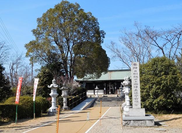 柳澤神社 (1)