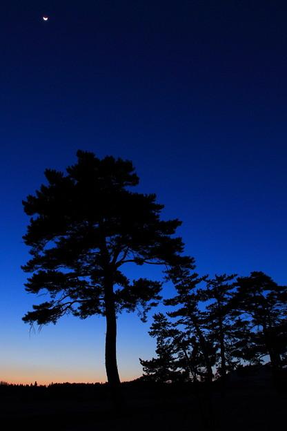 日没後の高原