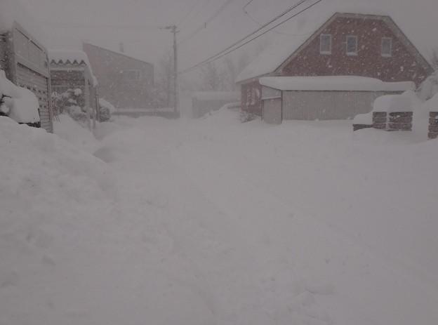 写真: 朝は吹雪いていました!