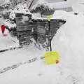 写真: 雪の山 もう限界!