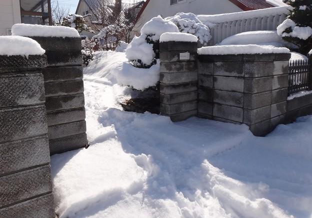 門周辺の雪