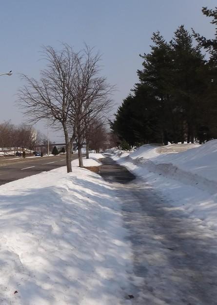 歩道には雪が残っている所も