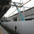Photos: 羽衣