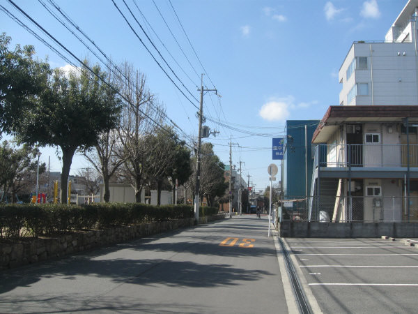 Photos: 遠望