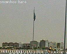 サウジで一番大きな国旗らしい