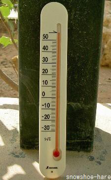 2010年7月12日の気温