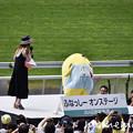 Photos: _DSC9746