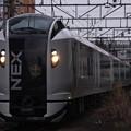 写真: E259系 NEX