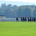 写真: Longchamp02