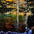 Photos: 青の池 1