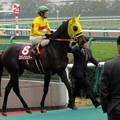 Photos: コパノジングーと藤岡佑介騎手