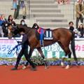 Photos: メイショウスザンナ