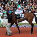 Photos: ローガンサファイアと浜中俊騎手