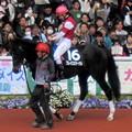 Photos: ブレイスエターナルとC.デムーロ騎手