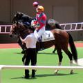 Photos: ティルナノーグと武豊騎手