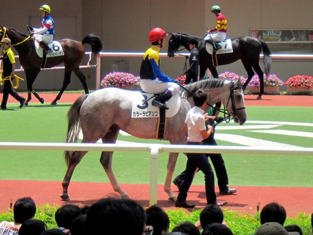 カラービアンコと戸崎圭太騎手