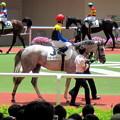 Photos: カラービアンコと戸崎圭太騎手