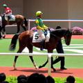 Photos: スズカブレストと岩田康誠騎手