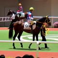 Photos: ストロベリーボスと義英真騎手