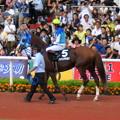 Photos: アドマイヤケルソと 福永祐一騎手